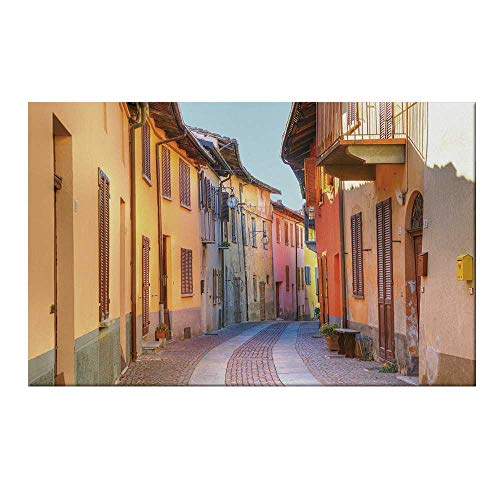 YOLIYANA Italy Durable Door Mat,Narrow Paves Street Among Old Houses in Town Serralunga DAlba Piedmont Decorative for Home Office,15.7
