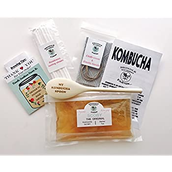 """Brindle Southern Farms' Large 4"""" Kombucha SCOBY + 1.5 CUPS of commercial grade starter kombucha + Brewing Extras. A 7-piece Set."""