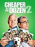 DVD : Cheaper By The Dozen 2