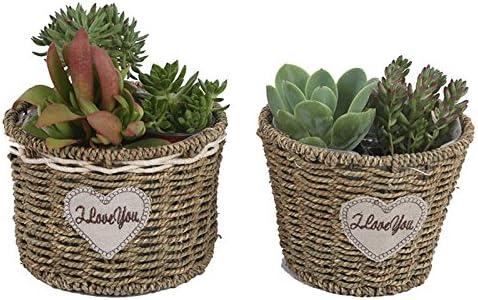LAAT Macetas Colgantes Cesta cesteria Cesta de Mimbre de Flor Cesta Flower Pot Interior como Exterior,35cm*30cm Cesta de Almacenamiento para Plantas