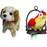 PLAY DESIGN TALKING PARROT WITH JUMPING DOG COMBO (Multicolor)