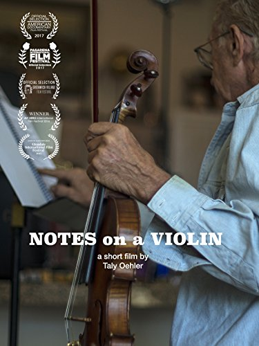 Notes on a Violin