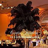 Special Sale 100 Pcs. BLACK OSTRICH Feathers Wholesale Bulk 13/18'' long DELUXE FEATHERS