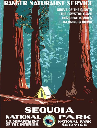American Vinyl Sequoia Art Poster Bumper Sticker (rv National Park Hike)