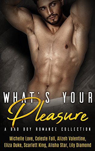 Whats Your Pleasure: A Bad Boy Romance Collection