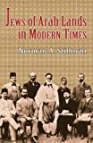 The Jews of Arab Lands in Modern Times, Norman A. Stillman, 0827607652