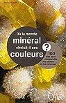 Où le monde minéral choisit-il ses couleurs ? 100 clés pour comprendre les roches et les minéraux par Caroff