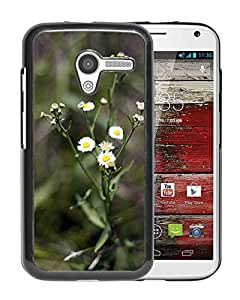 Unique DIY Designed Cover Case For Motorola Moto X With Miniature Daisies Flower Mobile Wallpaper Phone Case