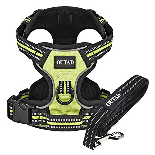 OUTAD Front Soft Lightwheight Range Dog Harness & Leash Set [X-Large, Large, Medium, Small]-Adjustable Reflective Pet Vest with Handle, Leash for Pet Safety Walking, Training, Hiking (Large, Green)
