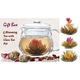 Best Gift Basket for Women! Organic Tea Flowering Gift Set: Glass Teapot with infuser & 6 Blooming Flower Green Tea Balls.