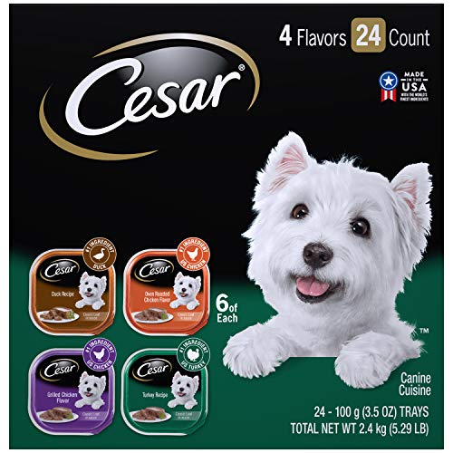 (CESAR Wet Dog Food Poultry Variety Pack, (24) 3.5 oz. Trays with Real Chicken, Turkey or)
