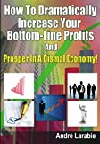 How To Dramatically Increase Your Bottom-Line Profits And Prosper In A Dismal Economy!