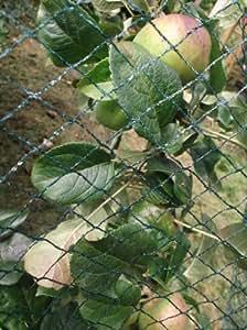 Nutley's  - Control de aves para protección de plantas, verde
