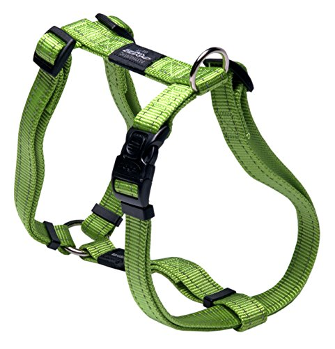 Reflective Adjustable Dog H Harness for Large Dogs; matching collar and leash available, Green