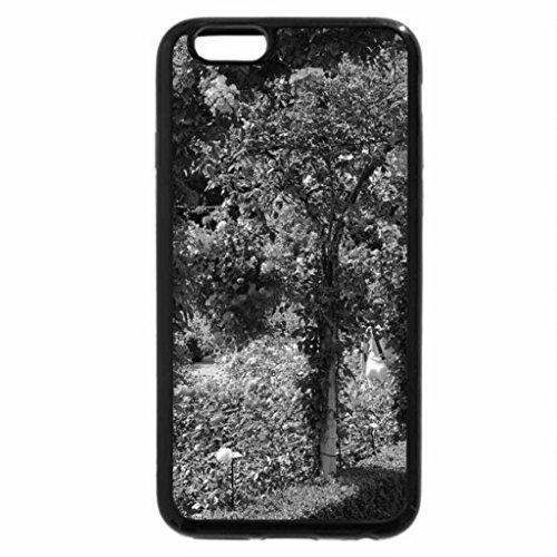 iPhone 6S Plus Case, iPhone 6 Plus Case (Black & White) - Roses and arches