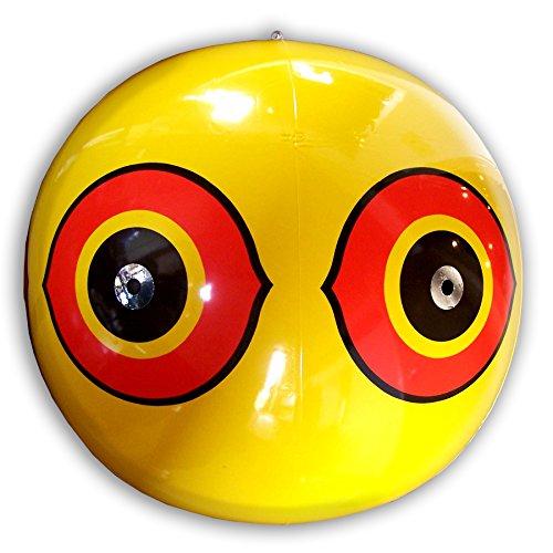 (Bird-X Scare-Eye Bird Repellent Predator Eyes Balloon, Yellow)