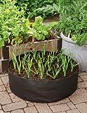 Garlic Grow Bag Kit