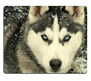 Animal Husky Dog Snow Wildlife Cute Cold Arctic Wolf mouse mat steelseries mouse pad 7.5*9 inch
