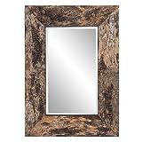 Howard Elliott Kawaga Mirror, Natural Birch Bark Frame, Rustic Lodge Decor