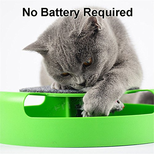 PETOU Cat Toy-New Pets IQ Treat Puzzle Toy –Electronic Rotating The Mouse Chase Interactive Cat/Kitten Toy With Scratch Pad
