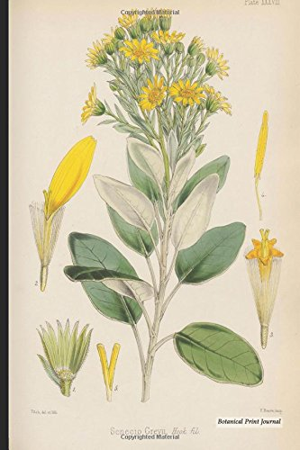 "Botanical Print Journal: senecio greyii, 6"" x 9"" Vintage Botanical Flower Print Journal - [Lined Journal] pdf"