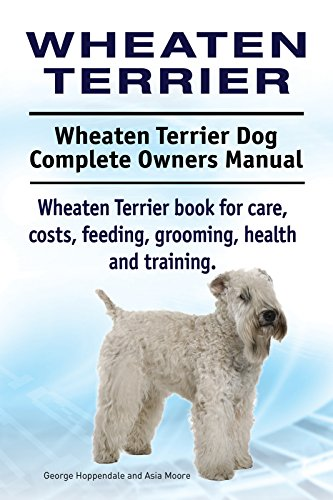 Wheaten Terrier Dog. Wheaten Terrier dog book for costs, care, feeding, grooming, training and health. Wheaten Terrier dog Owners Manual.