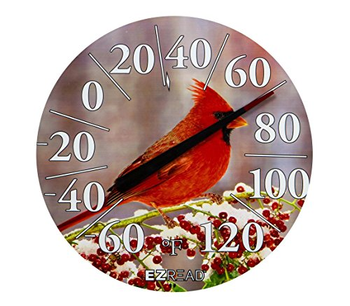 Cardinal Weathervane (Headwind Consumer Products 840-1225 EZREAD Dial Thermometer Winter Cardinal 12.5