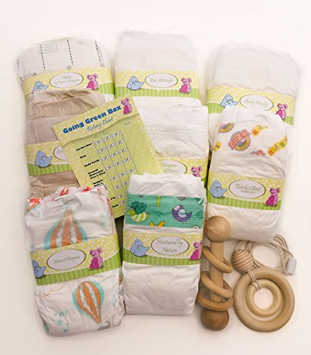 Perfectly Picked Diaper Sampler- Going Green Box - Eco Friendly Disposable Diaper Variety Pack (Extra Green Gift Set : Diaper size 1 with Teething Necklace and Wooden Rattle)
