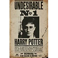 Harry Potter Poster Undesirable No 1 + Zusatzartikel