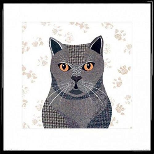 1art1 Gatos Póster Impresión Artística con Marco (Plástico ...