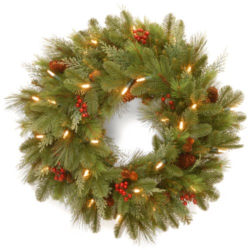 National Tree 24 Inch Noelle Wreath with 30 Battery Operated Soft White LED Lights (NL13-300L-24WB1) by National Tree Company