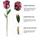 DEFAITH-Real-Rose-24K-Gold-Dipped-Forever-Gifts-for-Her-Valentines-Day-Anniversary-Wedding-and-Proposal-Attractive-Luster-and-Natural-Shape-Purple-with-Moon-Stand