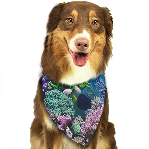 Pet Scarf Colorful Coral Bushes for Cat Bandana Fabulous Bibs ()