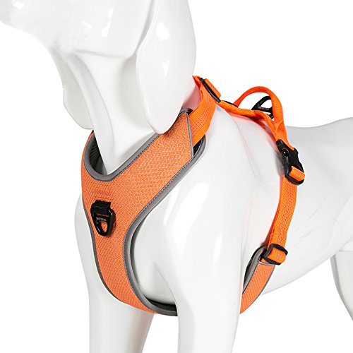 Chai's Choice Best New 2018! Outdoor Adventure Dog Harness. 3M Reflective Vest with Handle and 2 Leash Attachments. PLEASE Use Sizing Chart at Left Before Ordering. (Large, ()