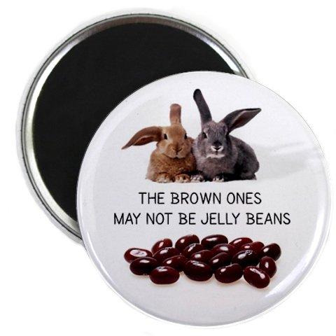 BROWN ONES AREN'T JELLY BEANS Easter Bunny 2.25 inch Locker Fridge Magnet