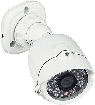 Opinión sobre Bticino - 391438 cámara de vigilancia de vídeo, ip66, led infrarrojos, compactos, compatible con teléfonos de video kit, blanca