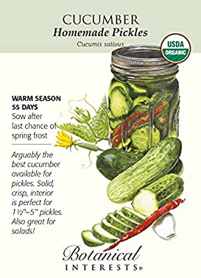 Homemade Pickles Cucumber Seeds - 1.5 grams - Organic