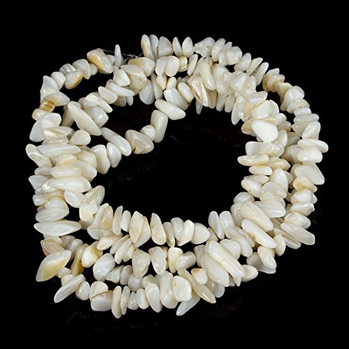 Shell Beads White (jennysun2010 Natural Gemstone 4-8mm Chip Beads 32'' - 35'' White Sea Shell Hematite Turquoise Malachite Coral 1 Strand for Bracelet Necklace Earrings Jewelry Making Crafts Design Healing)