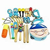 Hedwig Kids Preschool Early Education Wooden Musical Instruments Scientific Toys for Boys (Blue,Set of 16)