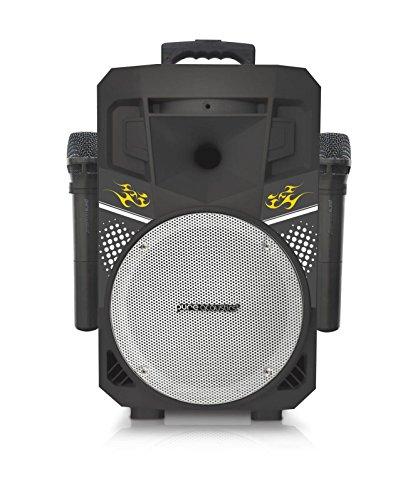 Pure Acoustics (MCP-75) | Suono Wireless Portable Bluetooth Speaker with 2 Wireless Microphones FM Radio Party Karaoke Machine Sound System Smartphone Soundstream Black & Silver