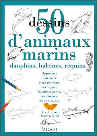 50 dessins d'animaux marins, dauphins, baleines, requins