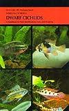 Dwarf Cichlids (American Cichlids)