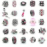 SEXY SPARKLES 10Pcs (10) of Assorted Pink Rhinestone and Metal Beads Charms Spacers for European Chain Bracelet