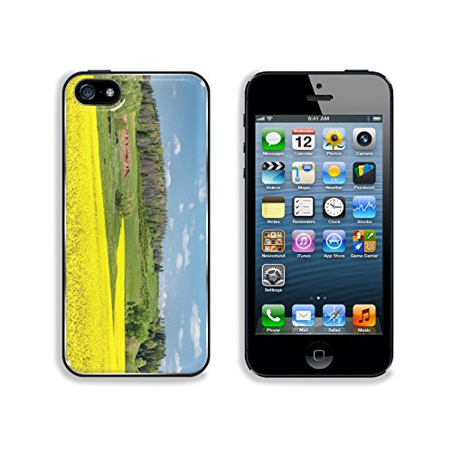 Liili Premium Apple iPhone 5 iphone 5S Aluminum Backplate Bumper Snap Case IMAGE ID 30774333 Fields and hills covered in bright yellow canola colza or rapeseed flowers Colorful blossom field