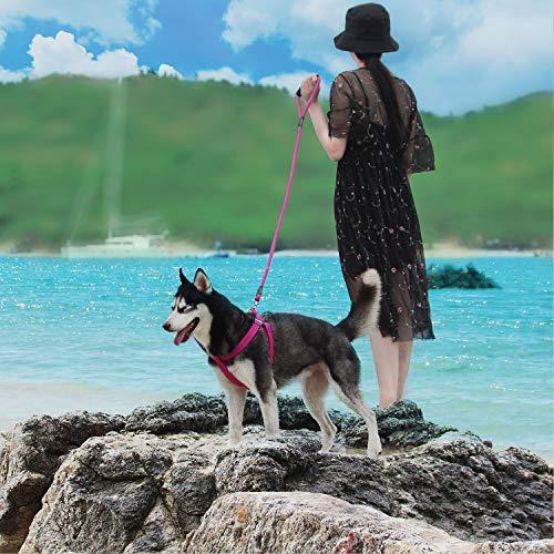 ThinkPet ComfortPro Heavy-Duty Polyester Adjustable Harness - Dog Harness Leash Set for Small Medium Large Dogs Walking/Hiking