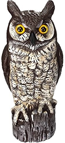 Horned Owl (Dalen OW6 Gardeneer By Natural Enemy Scarecrow Great Horned Owl)