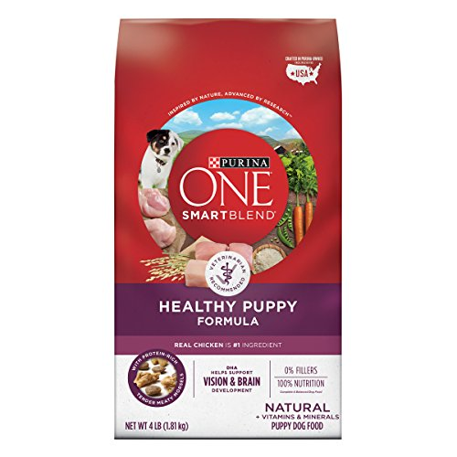 Purina ONE Natural Dry Puppy Food, SmartBlend Healthy Puppy Formula – 4 4 lb. Bags