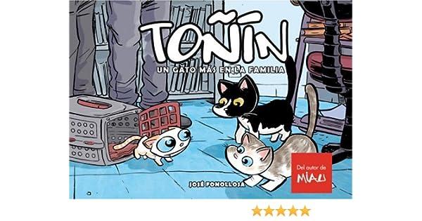 Toñin. Un Gato Más En La Familia: Amazon.es: Fonollosa, José: Libros