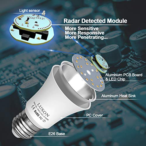 Buy buy radar detector