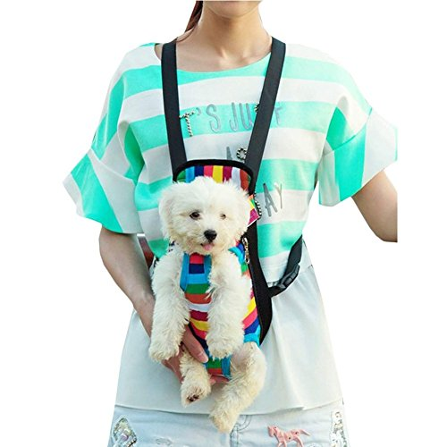 iefiel-summer-days-pets-dogs-cats-shopping-protable-carrier-bag-easy-access-s-0-55-lb-rainbow-stripe